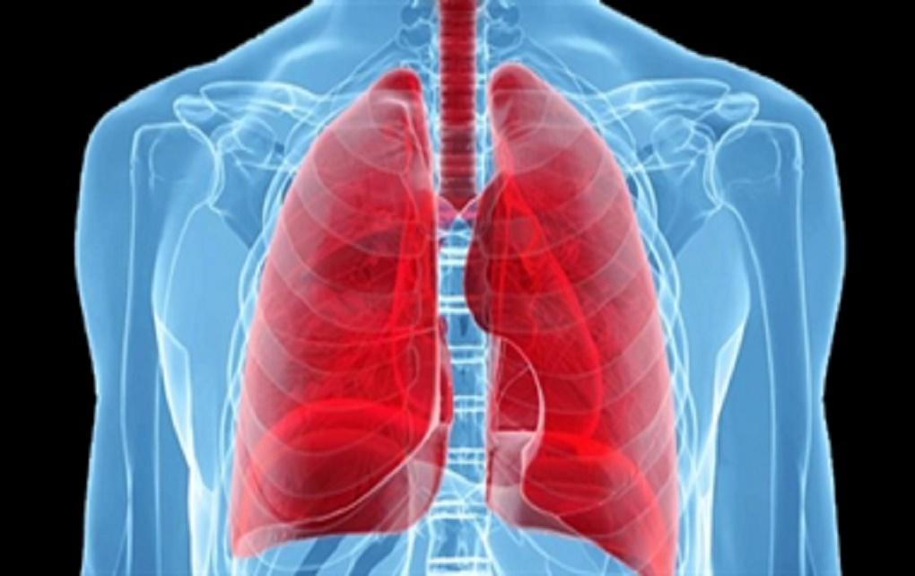 مشاهده چربی در ریه افراد چاق