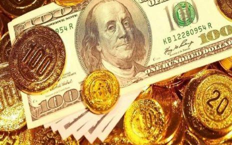 قیمت دلار و سکه ۱۴ بهمن