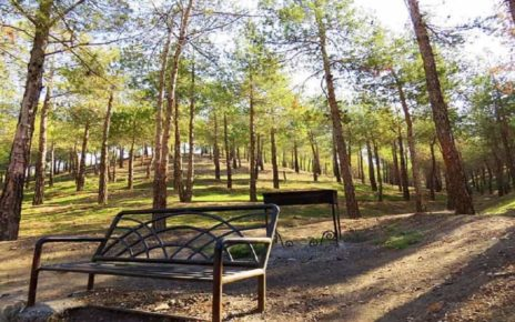 تعطیلی پارکها و مناطق جنگلی