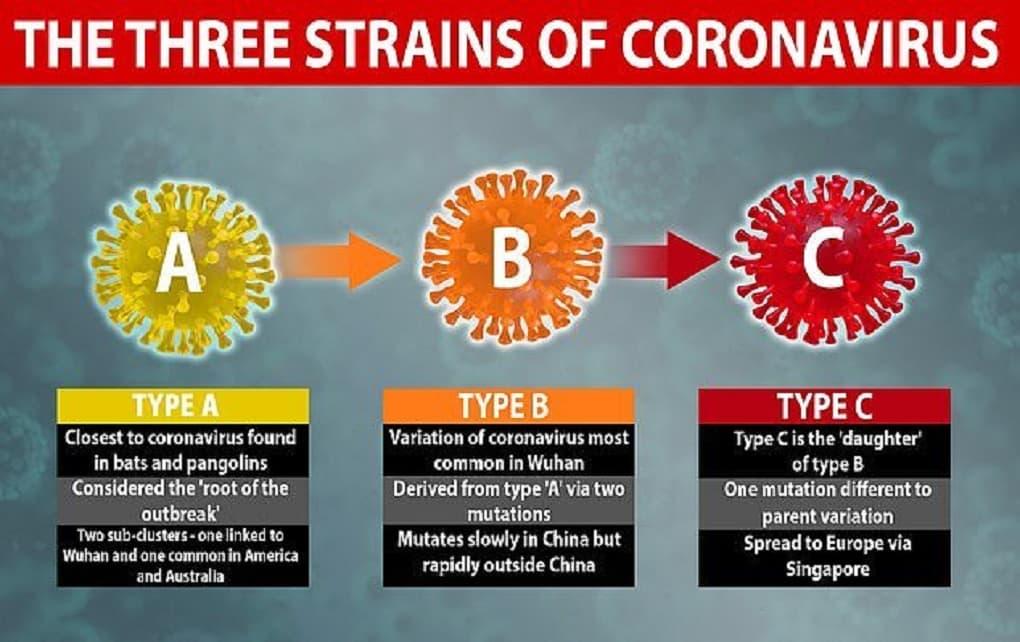 سه گونه مرگبار ویروس کرونا