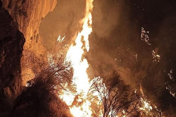 آتش سوزی جنگلهای منطقه حفاظت شده خائیز در استان کهگیلویه و بویراحمد