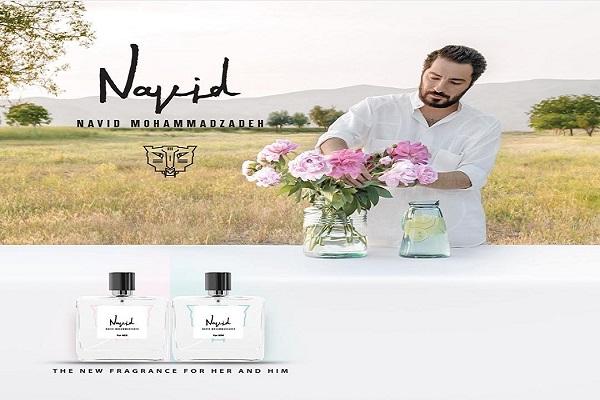 عطر نوید محمد زاده