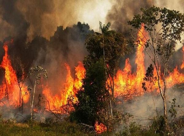 آتش سوزی بوزین و مرهخیل