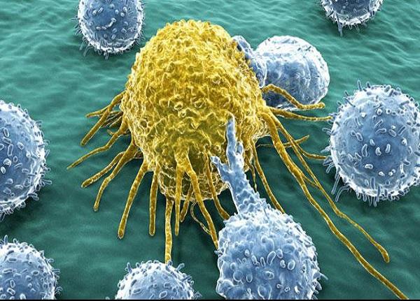 نابودی سلول های سرطانی با گلوله های نانو توسط محقق ایرانی