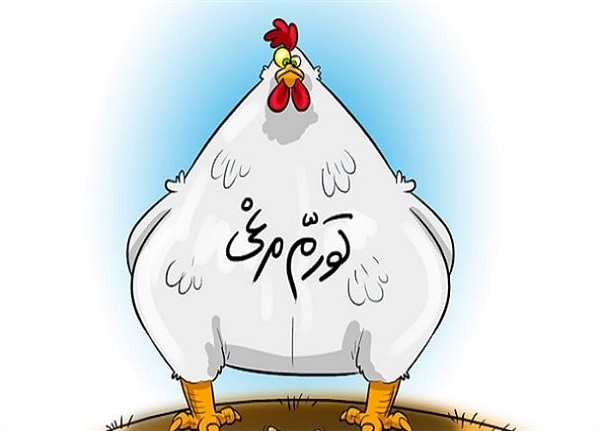 مگر خود مرغ ها برای ما کاری بکنند | واکنش مجری تلویزیون به گرانی مرغ