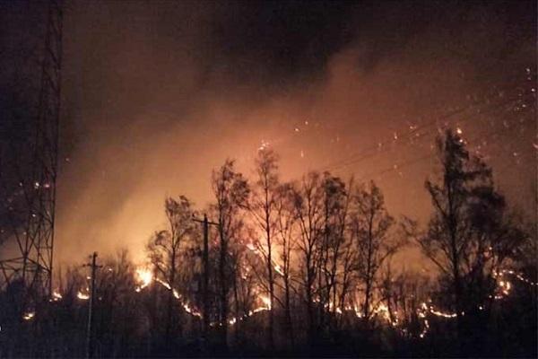 آتش سوزی جنگل های آقچای