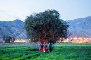 روستای بورسی ایران