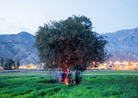 ضرر ۲۵ میلیاردی در تنها روستای بورسی ایران؛ در مال استریت چه میگذرد؟