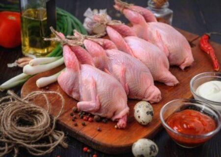 برای تقویت سیستم ایمنی بدن در برابر کرونا گوشت بلدرچین مصرف کنید