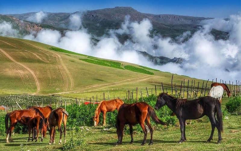 طبیعت رویایی روستای سوباتان شهرستان تالش
